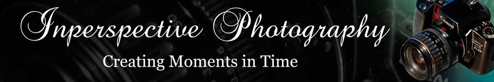 Inperspective Photography Creating Moments in Time